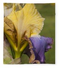 German Iris Fleece Blanket
