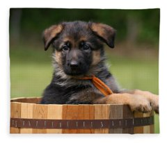 German Shepherd Puppy In Planter Fleece Blanket