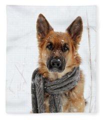 German Shepherd Wearing Scarf In Snow Fleece Blanket
