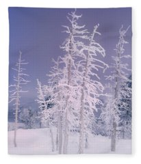 Ghost Trees Yellowstone National Park Fleece Blanket
