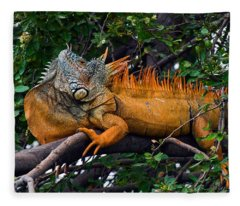 Giant Orange Iguana Fleece Blanket