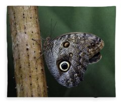 Giant Owl Butterfly On Screw Pine Fleece Blanket