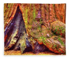 Giant Sequoia Base With Fire Scar Fleece Blanket