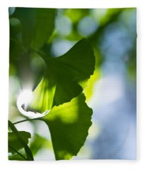 Gingko Leaves In The Sun Fleece Blanket