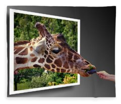 Giraffe Feeding Out Of Frame Fleece Blanket