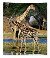 Giraffe Mother And Calf Fleece Blanket