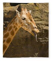 Giraffe Raspberry Fleece Blanket