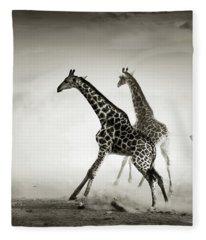 Giraffes Fleeing Fleece Blanket
