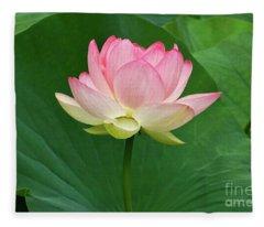 Glorious Beauty Of The Lotus Fleece Blanket