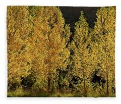 Golden Aspens Fleece Blanket