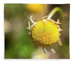 Golden Burst Fleece Blanket