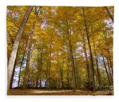 Golden Canopy Fleece Blanket