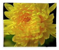 Golden Chrysanthemum  Fleece Blanket