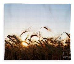 Golden Crop Fleece Blanket