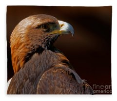 Golden Eagle In The Summer Sun Fleece Blanket