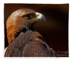 Golden Eagle In The Summer Sun Fleece Blanket