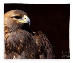 Golden Eagle - Stunning Portrait Fleece Blanket
