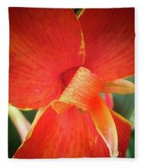 Golden Edge Fleece Blanket