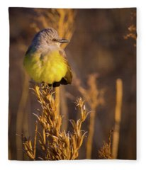 Golden Hour Flycatcher Fleece Blanket
