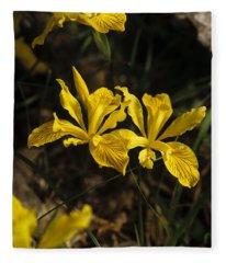 Golden Iris Fleece Blanket