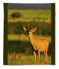Golden Light Buck II Fleece Blanket