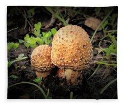 Golden Mushrooms Vignette Fleece Blanket