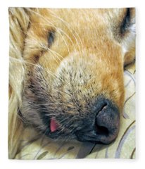 Golden Retriever Dog Little Tongue Fleece Blanket