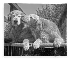 Golden Retrievers The Kiss Black And White Fleece Blanket