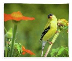 Goldfinch Feeding In A Garden Fleece Blanket