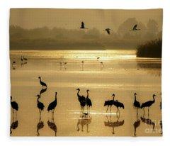 Good Morning Chula Lake Fleece Blanket