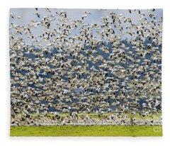 Goose Storm Fleece Blanket
