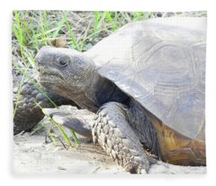 Gopher Tortoise Fleece Blanket