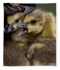 Gosling - Make Room Fleece Blanket