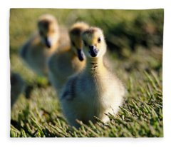 Gosling March Fleece Blanket