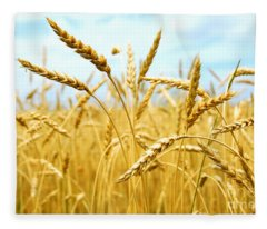Grain Field Fleece Blanket