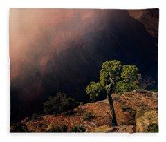 Grand Canyon Juniper Fleece Blanket