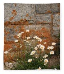 Granite Daisies Fleece Blanket