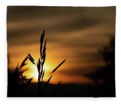 Grass At Sunset Fleece Blanket
