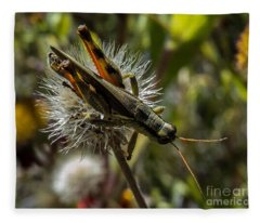 Grasshopper 1 Fleece Blanket