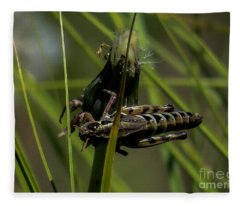 Grasshopper 2 Fleece Blanket