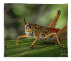 Grasshopper And Palm Frond Fleece Blanket