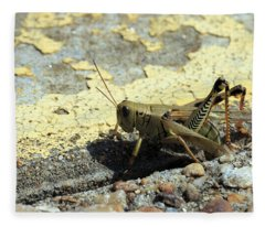 Grasshopper Laying Eggs Fleece Blanket