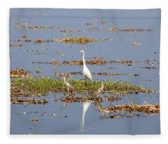 Grat Egret - India Fleece Blanket