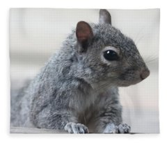 Gray Squirrel Fleece Blanket