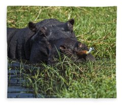 The Hippo And The Jacana Bird Fleece Blanket