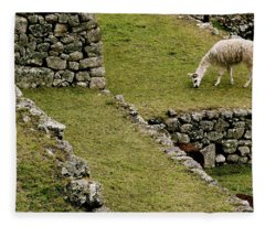 Grazing In Machu Picchu Fleece Blanket