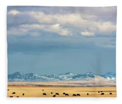Grazing Near Highwood Fleece Blanket
