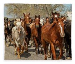Great American Horse Drive Fleece Blanket