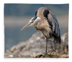 Great Blue Heron At The Ready Fleece Blanket
