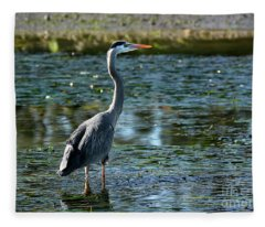 Great Blue Heron Catching The Light Fleece Blanket